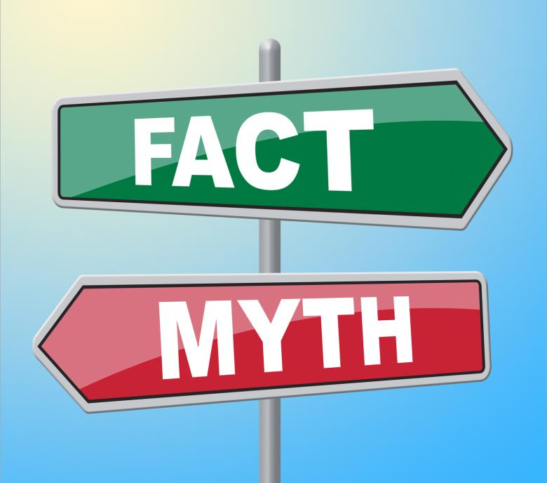 Myths & Facts of Lice