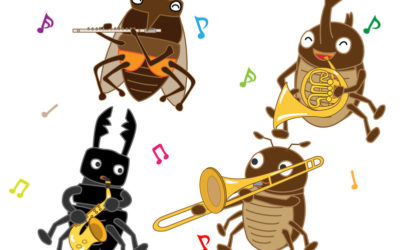 Beatles Ants Roches
